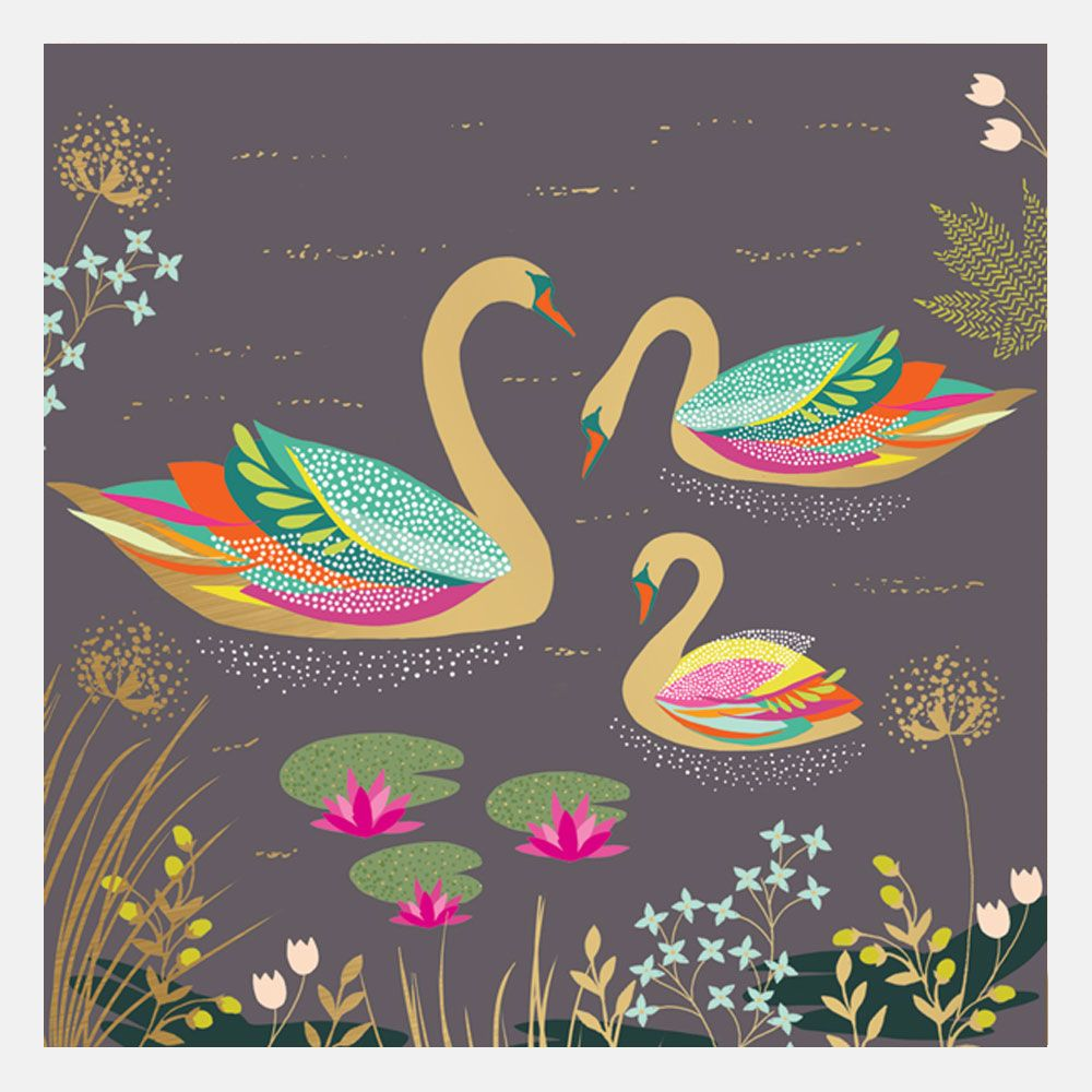 Three Swans Card By Sara Miller London