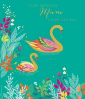 Amazing Mum Birthday Card By Sara Miller London