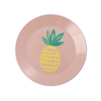 Coral Enamel Plate With Pineapple Print Rice DK