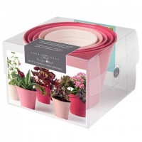 Set of 5 Ombre Plant Pots Raspberry Pink