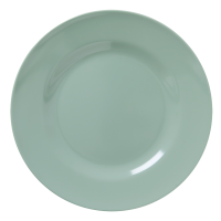 Khaki Green Melamine Dinner Plate by Rice DK