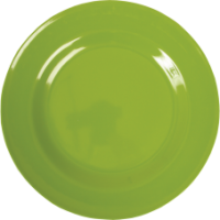 Apple Green Melamine Dinner Plate by Rice DK