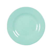 Dark Mint Melamine Side or Kids Plate Rice Dk