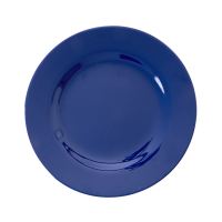 Navy Blue Melamine Side Plate or Kids Plate Rice DK