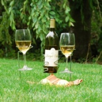 Picnic Stix Wine Bottle & Glasses  Holder
