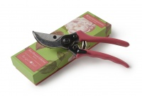 Burgon and Ball RHS Rosa Chinensis Secateurs Gift Boxed