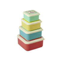 Set of 4 Colourful Food Boxes with Printed Lids Rice DK