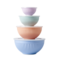 Melamine stacking storage bowls set of 4 Shine Colours Rice DK