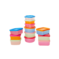 Set of 12 Colourful Small Plastic Storage Boxes Rice DK