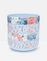 Set of 4 Melamine Bowls Joules Collection